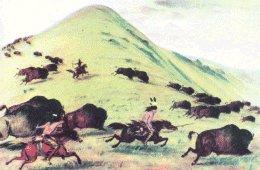 Die Indianer Nordamerikas - Jagd- und Fangmethoden