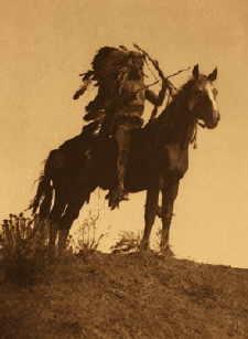 gotthund medizinhund nannten die pr rie indianer das pferd. Black Bedroom Furniture Sets. Home Design Ideas